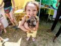 Лига барбосов: В Киеве прошла выставка беспородных собак