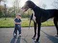 Лучшие друзья: милые фото малышей и домашних любимцев