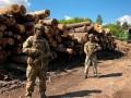 СБУ разоблачила незаконную вырубку леса на Закарпатье