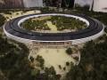 Новый офис Apple будет похож на космический корабль (ФОТО)