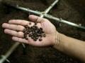 В Австрии со склада похитили две тонны кофе