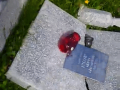 Во Львовской области мужчина разгромил сельское кладбище