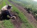 На Донбассе жители минируют от боевиков подступы к погребам