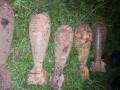 В Житомирской области мужчина подорвался на мине, которую хранил в сарае