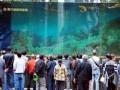 В торговом центре акулы выскочили из аквариума (ВИДЕО)