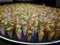 Катастрофа МН17: в Нидерландах стартовал международный симпозиум
