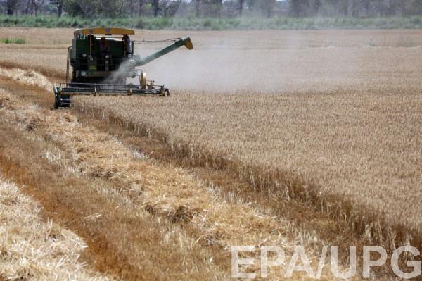 Ограничения касаются лицензии на поставку пшеницы в режиме внутренней переработки