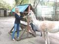 В России спецназ расстрелял зверей в зоопарке, - телеведущая