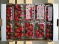 Австралийцы снова находят в магазинных фруктах швейные иглы