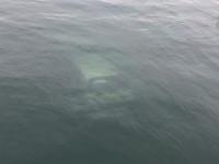 В Одесской области у моста утонуло авто с двумя людьми