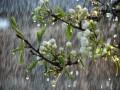 Погода на неделю: будут дожди и незначительное похолодание
