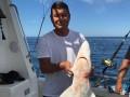 Беглый депутат Онищенко ловит в США акул