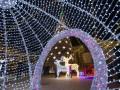 Итоги 25 декабря: Рождество в Украине и Femen у Папы