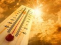В Британии впервые в истории зимой зафиксировано выше +20