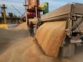 Пшеница из Украины и Европы заменит на рынке российскую - Минсельхоз США