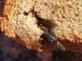 В Керчи молодой паре продали буханку хлеба с гвоздем