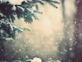Погода на неделю: Украина встретит Новый год со снегом и морозом