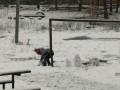 Украину накрыло первым снегом