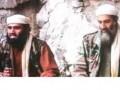 Зять бин Ладена предстанет перед судом США по обвинениям в терроризме