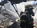 В Киеве горел Гидропарк