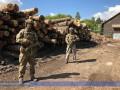 СБУ блокировала на Закарпатье масштабное хищение древесины