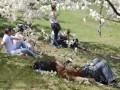 На майские в некоторых регионах могут запретить жарить шашлыки в лесу