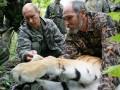 Тигр Путина сбежал в Китай