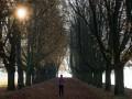 В Киеве шесть дней подряд фиксируются температурные рекорды