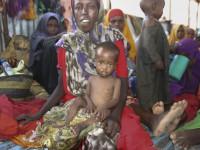 МККК: ситуация с голодом в Йемене и Сомали находится на грани