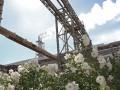 Выбросы в Крыму: в прокуратуре назвали версии экологической катастрофы