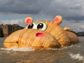 ХипоТемз: по Темзе плавает огромный бегемот (видео)