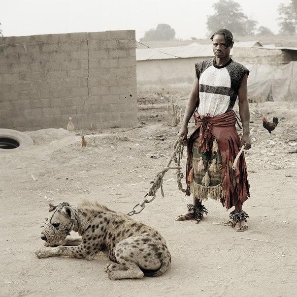 Ручные гиены нигерийцев – Pieter Hugo