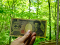 Активы Центробанка Японии превысили пять триллионов долларов