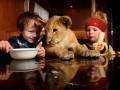 Маленький дрессировщик живет со львом (ФОТО)