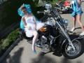 Революция - не помеха: Донецк оккупировали невесты