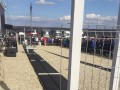 В Румынии открыли однометровую автомагистраль