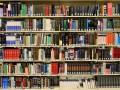 Названы книги, продажи которых взлетели во время пандемии