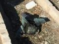 Крушение самолета: Bellingcat проверит версию о ракете