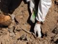 Искал останки солдат: мужчину насмерть засыпало землей в Донецкой области