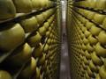 Роспотребнадзор проверяет каждую партию украинских сыров - Онищенко