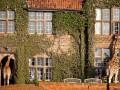 ТОП-10 самых необычных отелей в мире (фото)