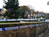 Шотландец разбился насмерть, упав с рождественской елки