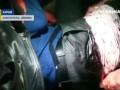 В Харькове организатору местного Евромайдана нанесли 12 ножевых ранений