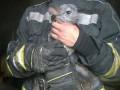В Вишневом пожарные спасли из огня шиншилл
