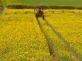 В Запорожской области фермера ограбили на $500 тысяч