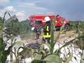 Под Киевом упал и загорелся легкомоторный самолет