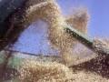В Одесском порту открыли первую очередь зернового терминала