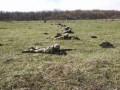 На полигоне под Одессой ранены трое курсантов
