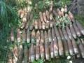 В Винницкой области в парке нашли более 700 снарядов