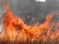 В Житомирской области погибли супруги, сжигая траву